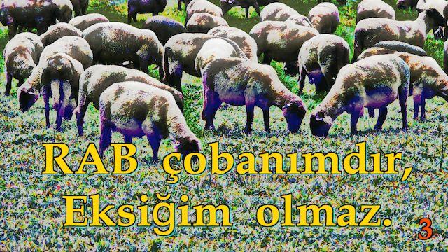 3 Rab Çobanımdır