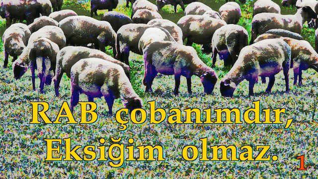 1 Rab Çobanımdır